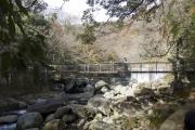 箱根堂ヶ島渓谷遊歩道・桜橋