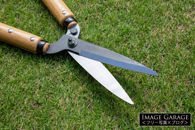 園芸用の刈込鋏の刃のフリー画像(無料写真素材)