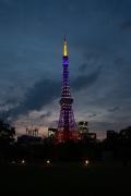 夕暮れの東京タワー(6月藤色・縦)