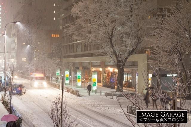 平成26年豪雪・東京に降った大雪のフリー写真素材