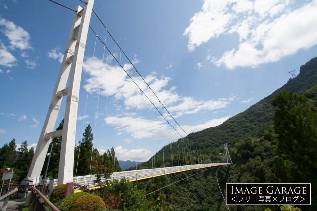 上野スカイブリッジのフリー写真素材