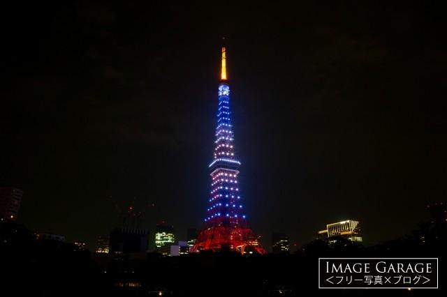 7月海色の東京タワーの夜景のフリー写真素材