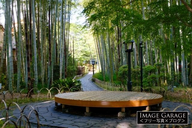 竹林の小径と円形のベンチのフリー画像(無料写真素材)