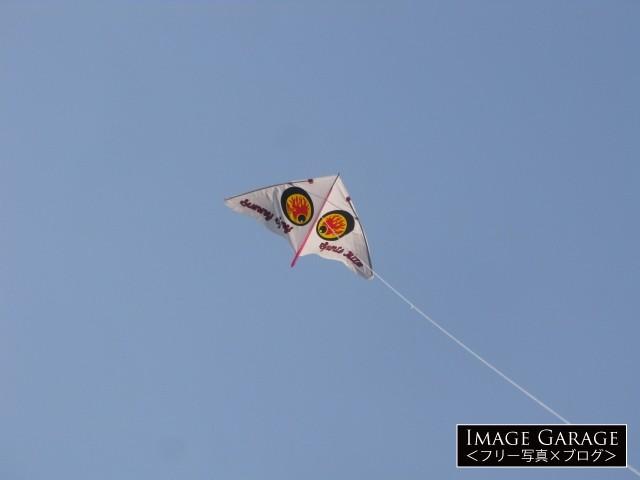 ゲイラカイト sunny flyのフリー写真素材(無料画像)