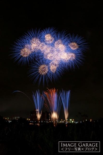 たくさん開いた小振りの青い打ち上げ花火のフリー写真素材(無料画像)