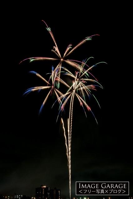 ヤシの木のような花火のフリー画像(無料写真素材)