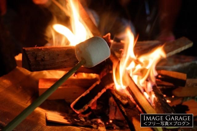 焚き火で作るマシュマロ焼きのフリー写真素材(無料画像)