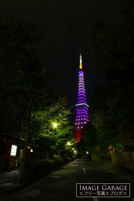 9月秋草色の東京タワー(増上寺北側の路地)のフリー画像(無料写真素材)