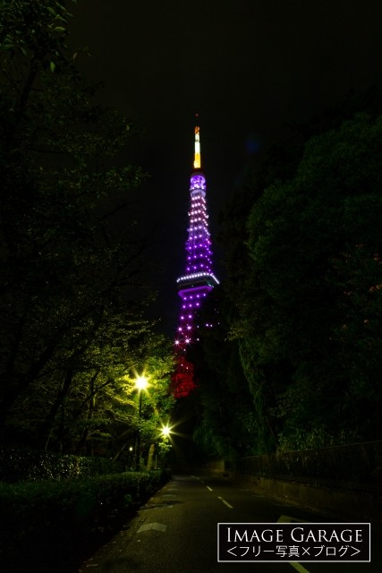 紫色の東京タワー(増上寺北側の路地)のフリー写真素材(無料画像)