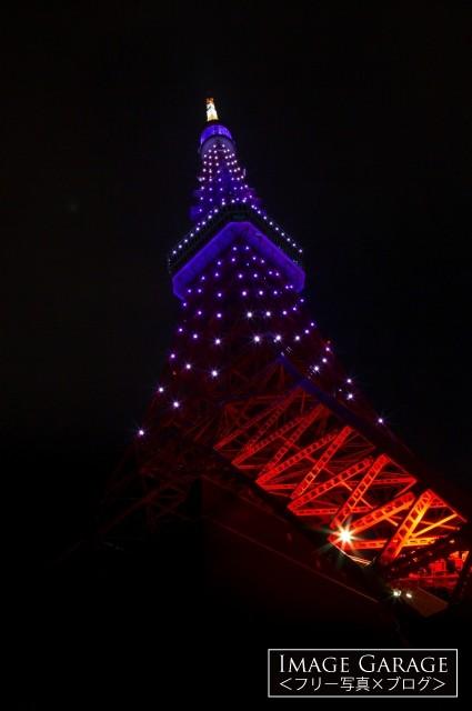 9月秋草色の東京タワー(真下から)のフリー写真素材(無料画像)