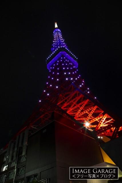 9月秋草色の東京タワー(真下より)のフリー画像(無料写真素材)