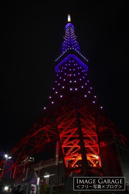 紫色(秋草色)の東京タワー(下から)のフリー写真素材(無料画像)