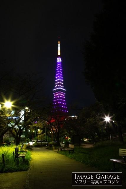 9月秋草色の東京タワー(芝公園赤羽橋付近)のフリー写真素材(無料画像)