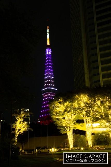 秋草色の東京タワー(ザ プリンス パークタワー東京)のフリー写真素材(無料画像)