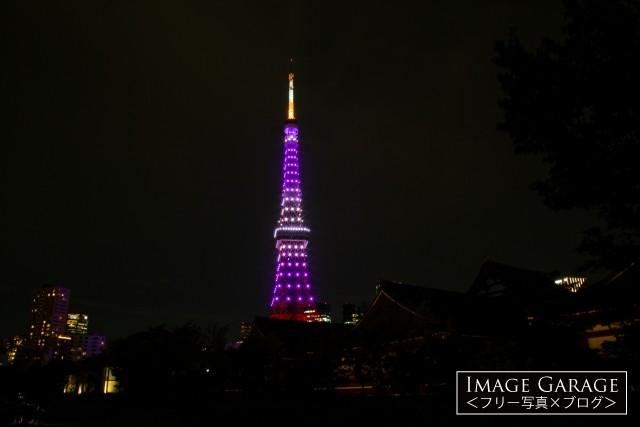紫色の東京タワー(増上寺会館越し)のフリー画像(無料写真素材)