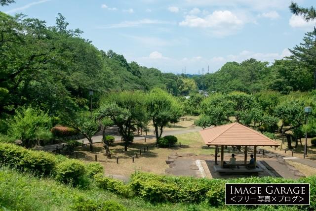 緑が濃くなってきた大倉山梅園のフリー画像(無料写真素材)